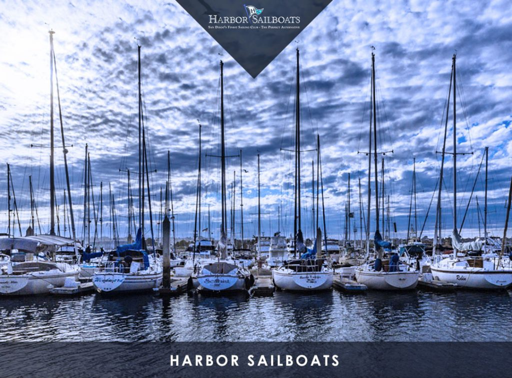 Harbor Sailboats