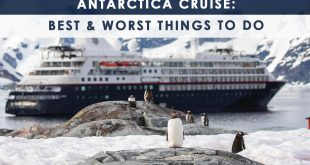 Antarctica Cruise: Best & Worst Things to Do