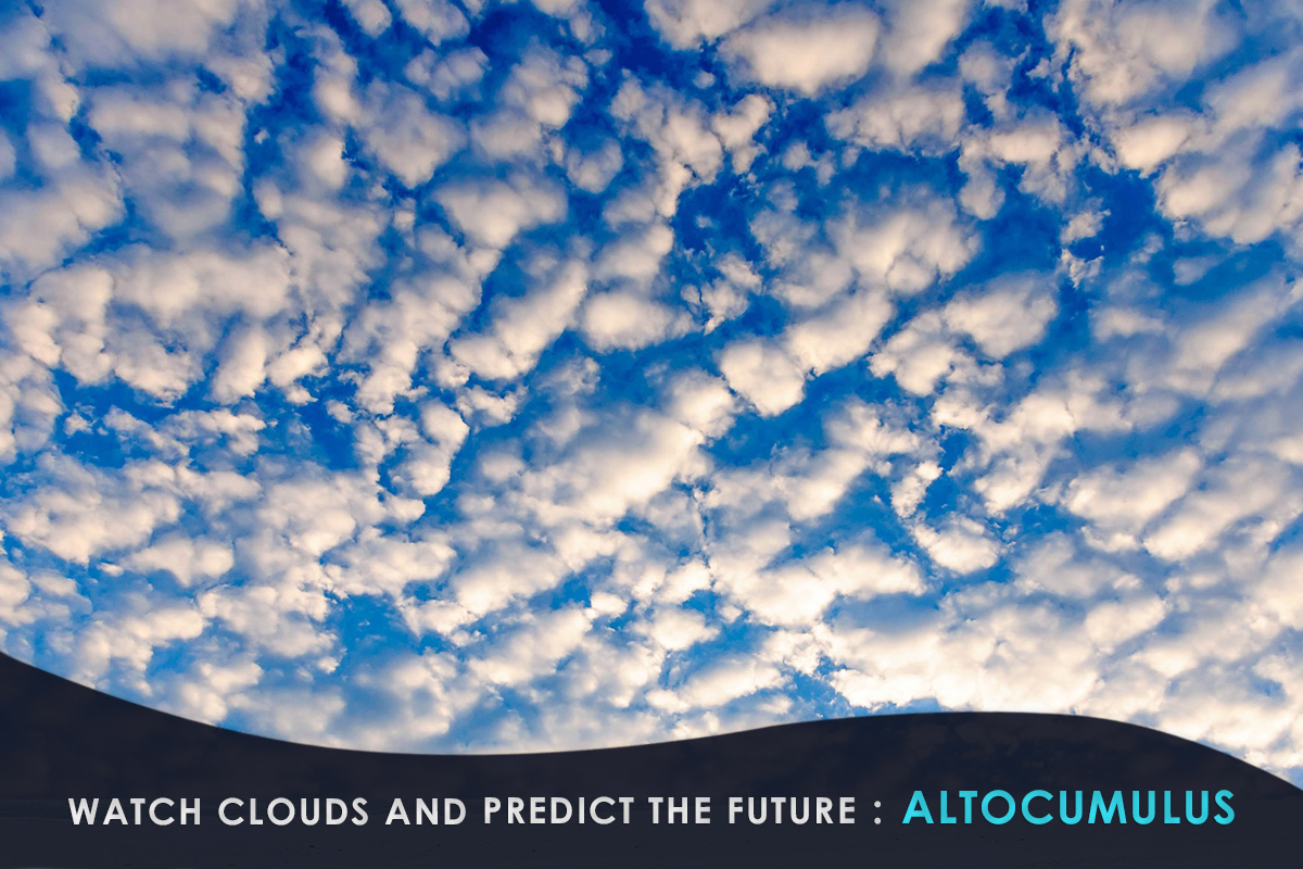 Watch Clouds and Predict the Future-Altocumulus