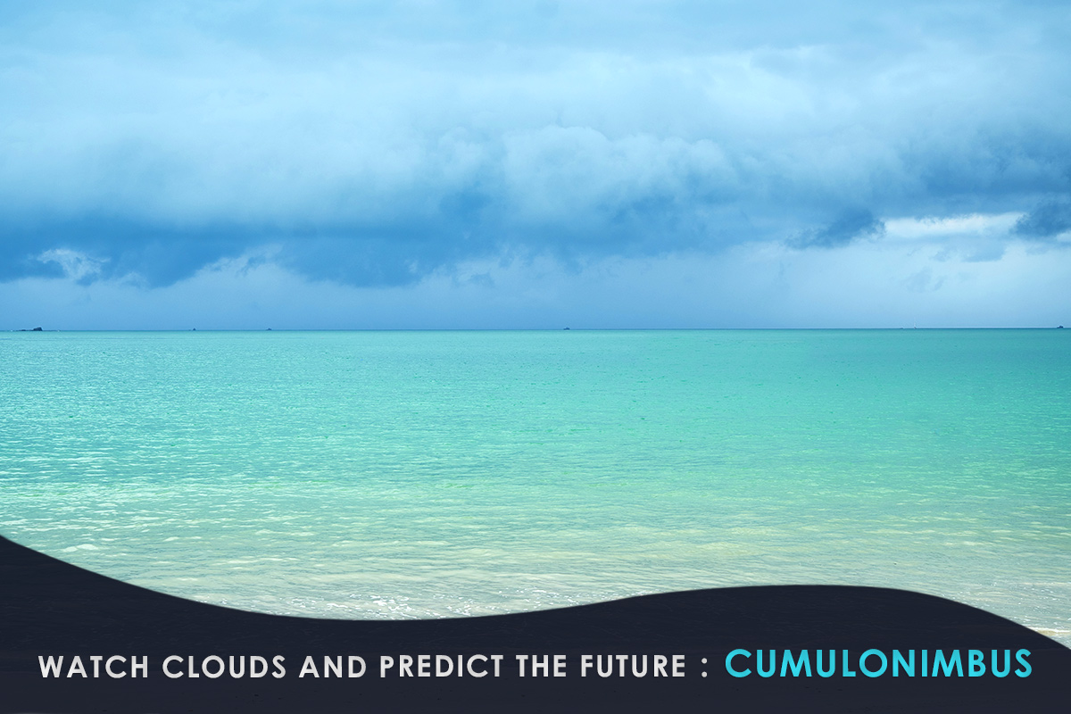 Watch Clouds and Predict the Future-Cumulonimbus