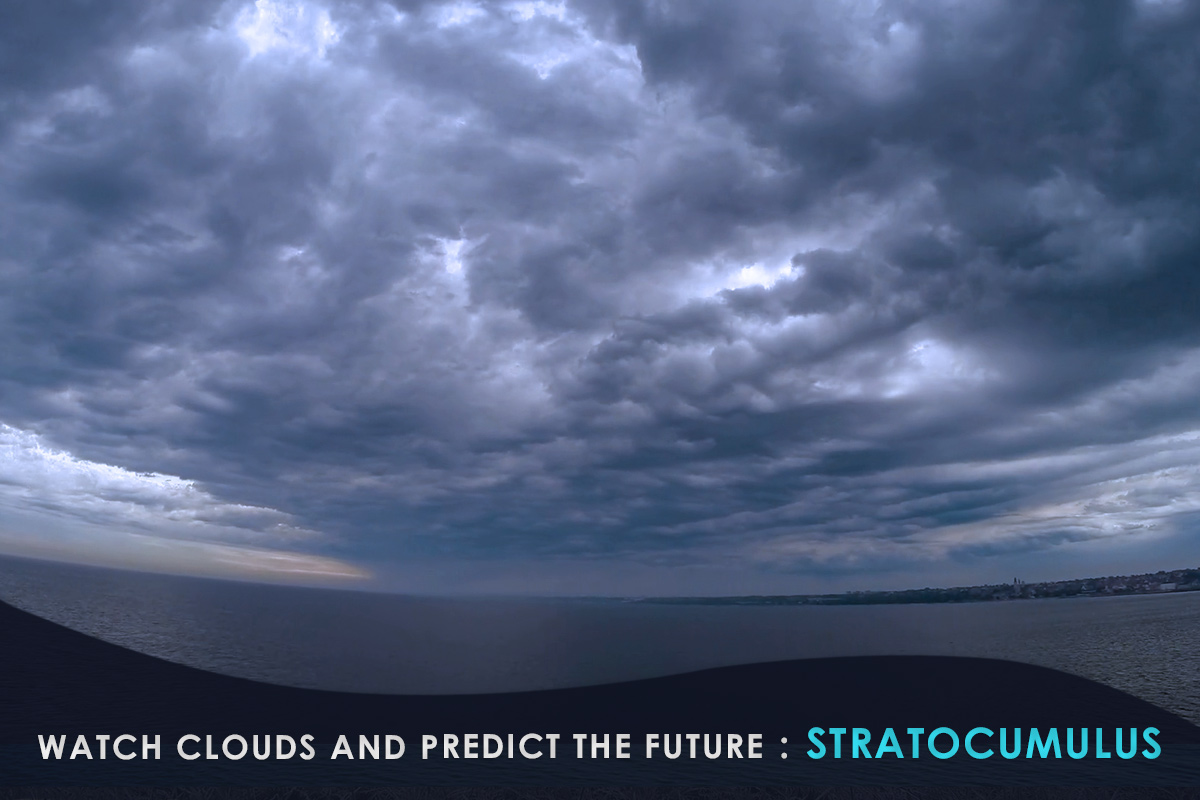 Watch Clouds and Predict the Future-Stratocumulus