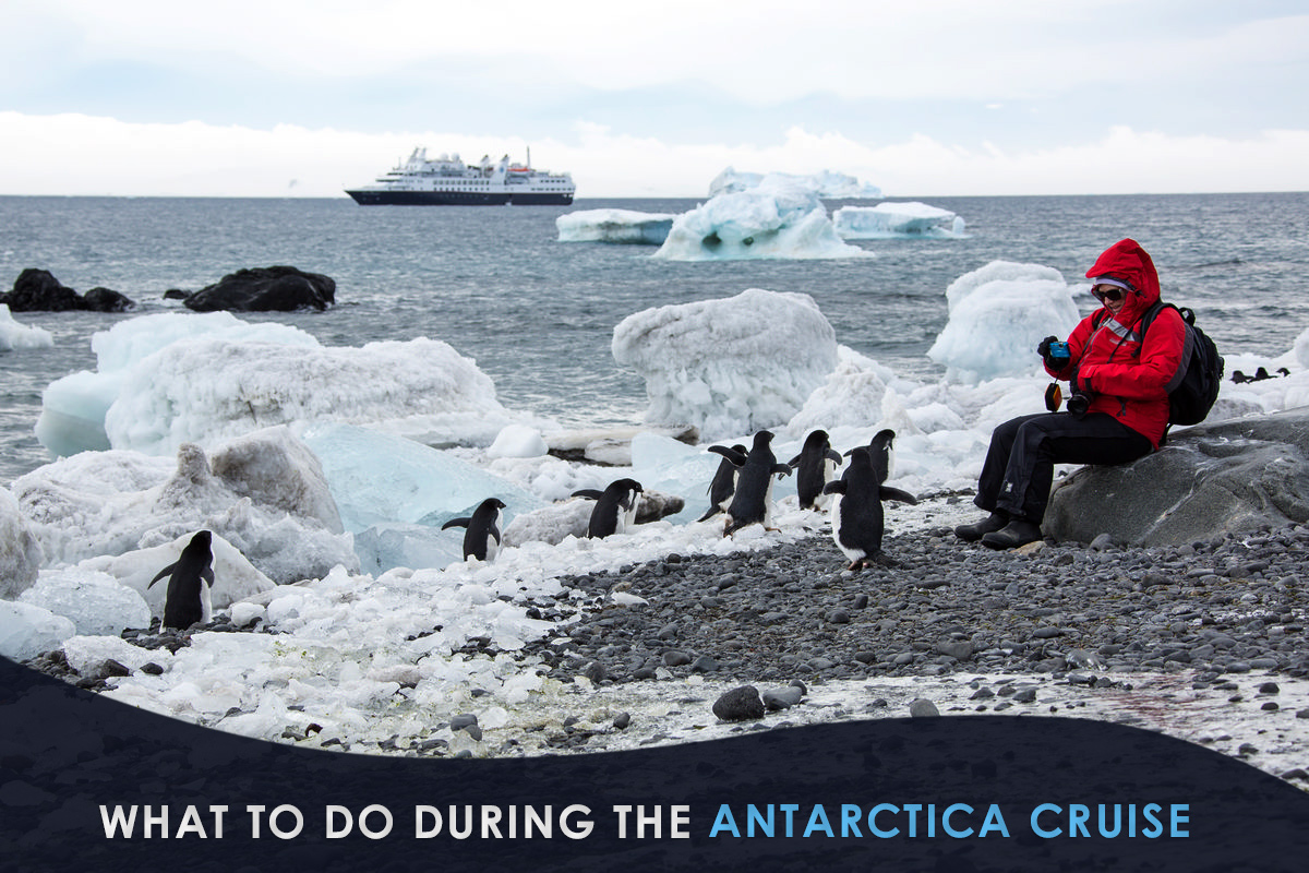 What to Do During the Antarctica Cruise