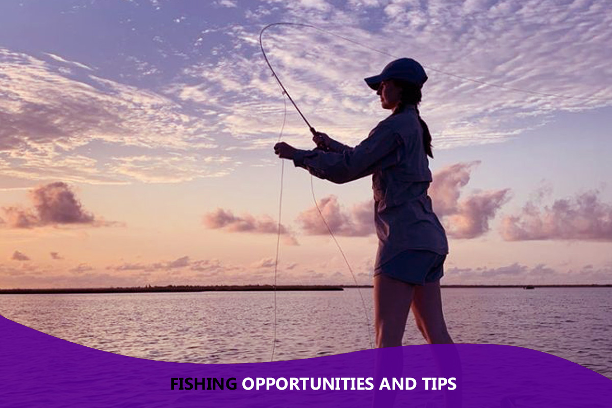 Fishing Opportunities and Tips