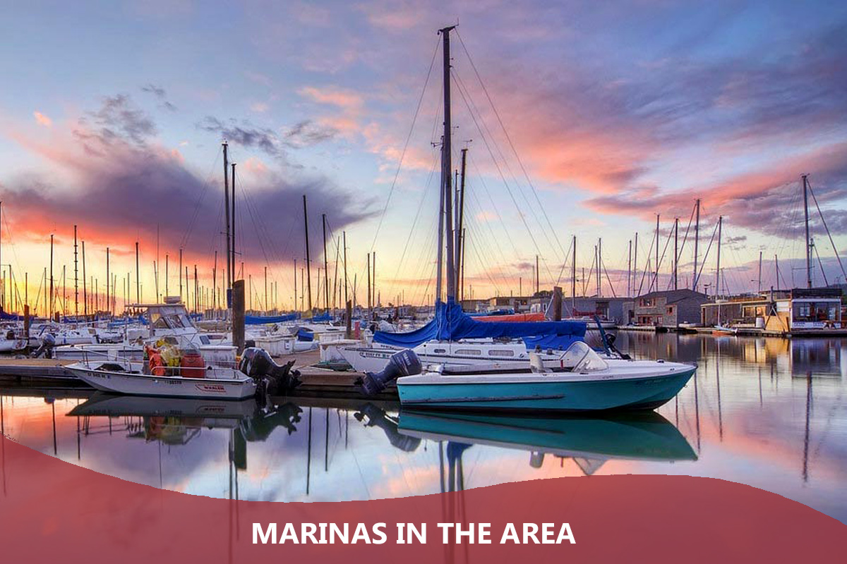 Marinas in the Area