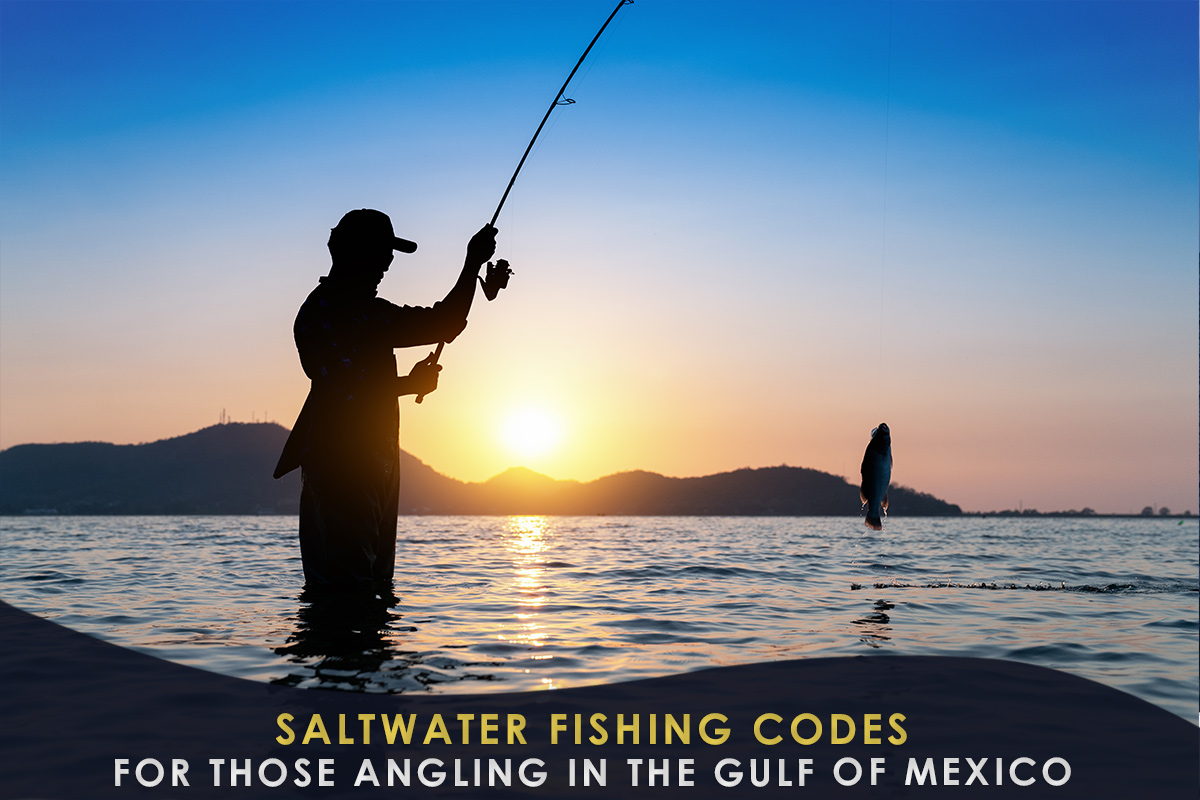 Saltwater Fishing Codes for Those Angling in the Gulf of Mexico