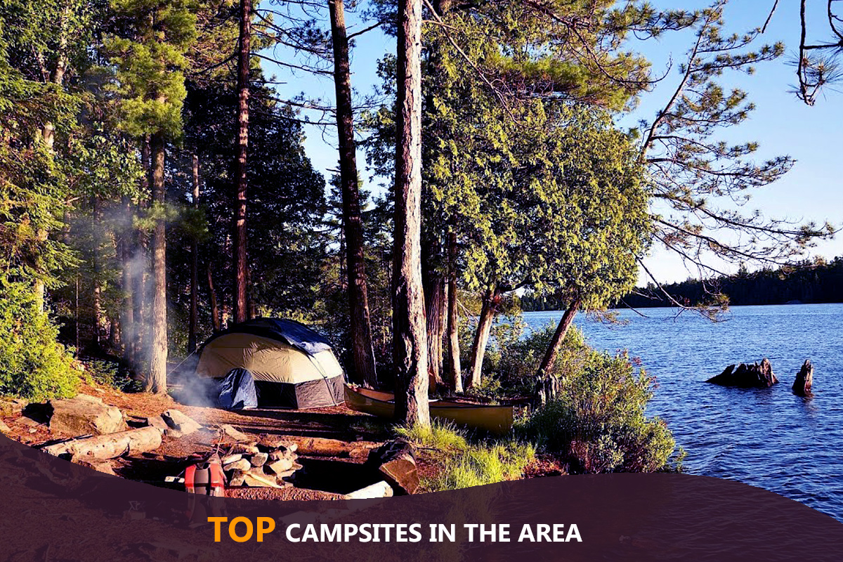 Top Campsites in the Area